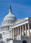 Federal Budget Challenge icon