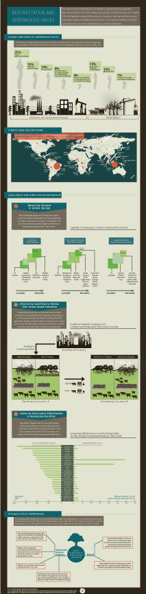 CBO's Deforestation Infographic